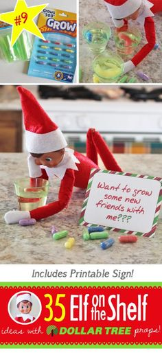 BRAND NEW Creative & Funny Elf on the Shelf Ideas with Dollar Tree props! Want to grow some friends? Find the free printable and BRAND NEW Elf on the Shelf ideas for this year! These fun, creative & EASY ideas all include an item from the Dollar Tree! Christmas Activities, Christmas Printables, Christmas Traditions, Christmas Elf, Christmas Humor, Christmas Crafts, Christmas Stuff, Christmas Ideas, Christmas Carol