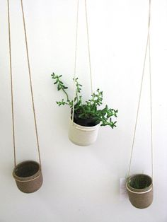 Bridget Bodenham natural plant hanger - medium| Mr Kitly