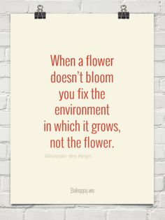 When a flower doesn't bloom you fix the environment in which it grows, not the flower. by Alexander den Heijer #716958
