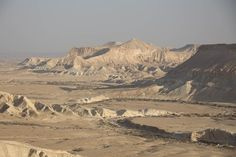 The Israelites lived in the Wilderness on manna and quail for 40 years