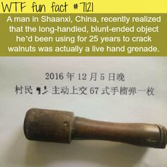 Chinese man used a live hand grenade to crack walnuts - WTF fun facts
