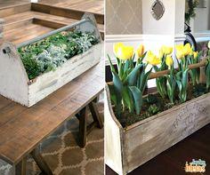 Sabe aquela antiga caixa de ferramentas que não é mais usada? Você pode reaproveitar para cultivar flores e levar para onde você quiser na sua casa. Muito prático! ;)