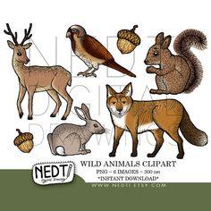 vintage deer illustrations - Google Search