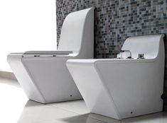 what a cool toilet...and I'll take the matching bidet too!