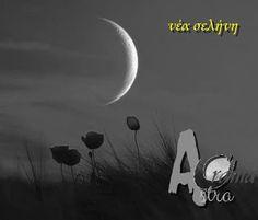 Νέα Σελήνη στον Σκορπιό 15/11 ~ official