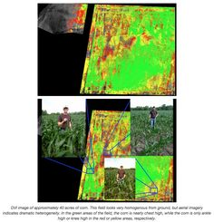 Agriculture Drone Buyers Guide - DVI images of 40 acres of corn courtesy Agribotix
