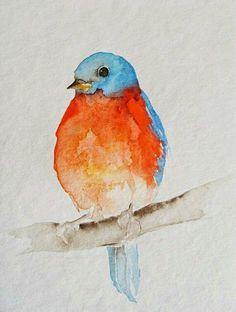 Pajarito Orange Color, Blue Bird, Bright Colors, Bright Colours, Vivid Colors
