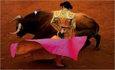 spanish bull fighting images - Google Search