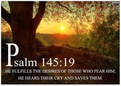 Psalm 145:19