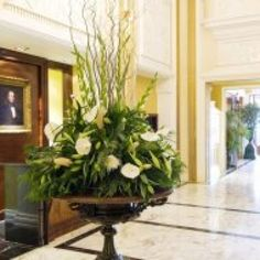 Hotel Reviews Ireland - - The Westgrove Hotel, Naas, Co. Kildare