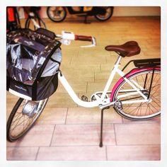 mobility.askoll.com #motorino #scooter #motorbike #askoll #mobilità #nosmog #elettrico #ambiente #natura #ecofriendly #bici #bike #pet #animali