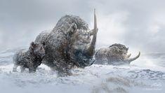 Woolly Rhinos by Balcsika on DeviantART