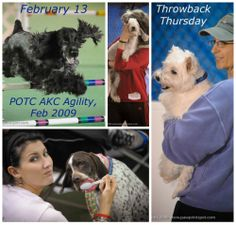 PHOTO OF THE DAY. Feb 13: Throwback Thursday! A blast from the past--photos from POTC AKC Agility, Feb 2009, at the Fieldhouse in Zanesville OH! See LOTS more at www.Facebook.com/media/set/?set=a.10152314110989574.1073741938.207101719573&type=1
