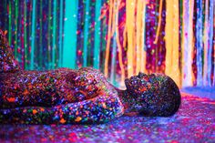 Lost In Infinity Split: Psychedelic Photos by Alex Markow & Magnus Sodamin | Inspiration Grid | Design Inspiration