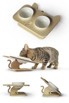 we love cats. Cat Brain, Cat Hacks, Diy Dog Bed, Cat Playground, Pet Feeder, Pet Furniture, Cat Accessories, Cattery, Pet Bowls