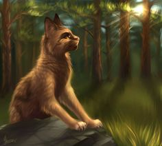 Fox by M-Y-S-T-l-C on DeviantArt