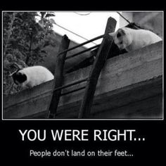 You were right...People don't land on their feet.
