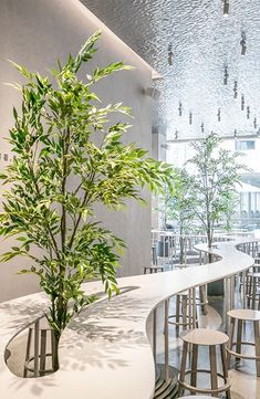 Three Tea Shops in China by A.N ARCHITECTS have designed three locations of HEYTEA, a chain of tea shops in China, that each have their own unique look, featuring communal seating areas.The first tea shop has a large t Restaurant Interior Design, Commercial Interior Design, Office Interior Design, Commercial Interiors, Office Interiors, Interior Shop, H Design, Cafe Design, Coffee Shop Design