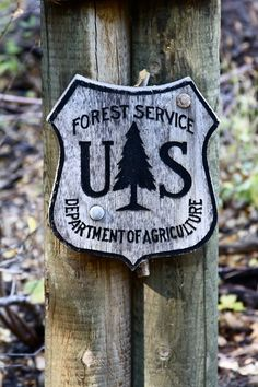 Forest Service.