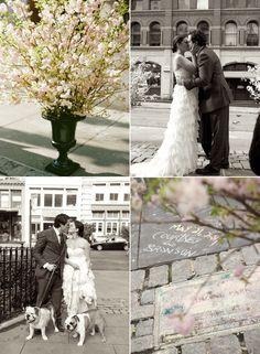 Φωτογραφίες από ένα γάμο στο κέντρο της πόλης, που δε θα ξεχάσουμε! Γράψτε τα ονόματά σας στα πεζοδρόμια, που σαν ερωτευμένοι χιλιοδιασχίσατε. Φωτογραφηθείτε με τους αγαπημένους σας τετράποδους φίλους. Επεκτείνετε τη διακόσμηση του χώρου της γαμήλιας δεξίωσης μέχρι έξω! www.lovetale.gr