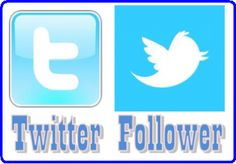 I will deliver 11000 TWITTER FOLLOWERS for $10