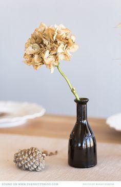 Brown glass bottle & dried flower | Photo: Wesley Vorster, Styling: Leipzig & Landtscap