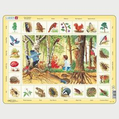Springbok Larsen The Forest Children's Educational Jigsaw Puzzle Paw Patrol, Increase Vocabulary, Forest Ecosystem, Puzzle Frame, Flower Names, Plant Species, Puzzles For Kids, Creative Thinking, Nature Scenes