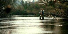 Go fly fishing.
