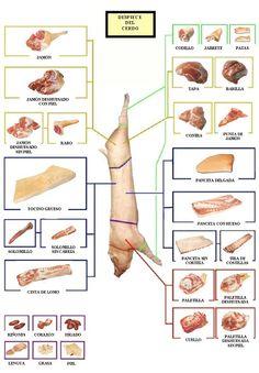 GastroNomia. MateriasPrimas: Tipos de cortes: Despiece del PORCINO