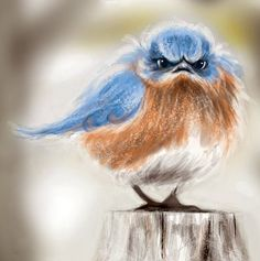 Mad Bluebird - LOL