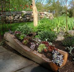 Split Stump Planter
