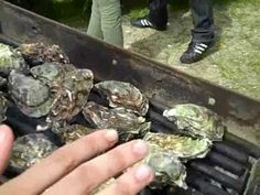 Grilled Oysters w/a little lemon garlic butter or hot sauce