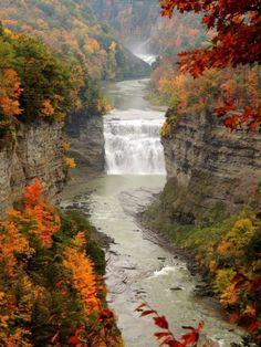 Letchworth State Park Fall Foliage