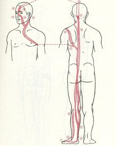 Scientific Qi flow explanation - in visual form