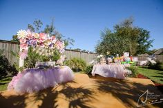 Butterfly Garden Birthday Party Ideas | Photo 1 of 23