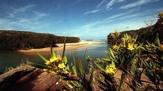Majestic ... Wattamolla beach inlet on the Royal Coast walk has waterfalls and freshwater lagoons. #Australia