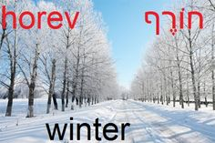 Hebrew winter - horef - with an 'f' sound at the end.