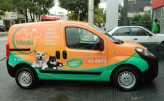 Gráfica Vehicular - Ploteo para Autos