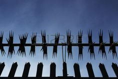 Picture of Silhouette of metal security fence from a low angle with blue sky background stock photo, images and stock photography. Blue Sky Background, Low Angle, Post Apocalypse, Fence, Royalty, Van, Silhouette, Stock Photos, Landscape