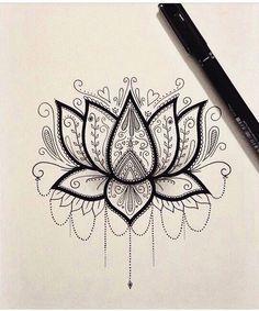 Pretty lotus flower
