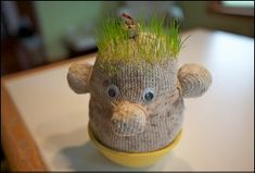 Grow a friendly face! Instead of growing grass or seeds in a Styrofoam cup this spring, create your own stuffed friends—and observe as each begins to sport a signature spiky green 'do!
