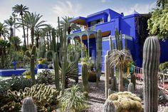 Majorelle Gardens in Marrakesh are a dream. Thank you, Mr. YSL.