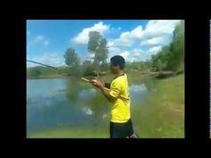 funny snakehead fishing in Thailand ตกปลาชะโดใหญ่อย่างฮา