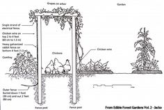Introduction to Permaculture Interesteding in learning more about permaculture? Here's some great info about it and how to incorporate it in your homestead~The Homesteading Hippy Farm Gardens, Outdoor Gardens, Veggie Gardens, Permaculture Principles, Permaculture Garden, Potager Garden, Backyard Farming, Garden Plants, Future Farms