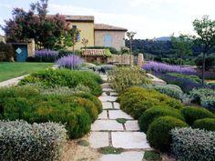 Mediterranean Garden pathway with colorfull plants