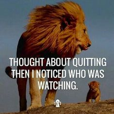 The 100 Greatest Brother Quotes And Sibling Sayings The famous quotes about brother: These quotes will tell you how brothers and sisters relationship and lo Lion Quotes, Me Quotes, Motivational Quotes, Inspirational Quotes, Qoutes, Positive Quotes, Quotations, Quotable Quotes, Positive Phrases