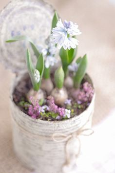 Voorjaarsbloemen in blik. Leuk om het blik te verven of lekker aan de slag met decopatch