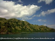 Rinca island, Komodo National Park, Indonesia #komodo #new7wonder #indonesia