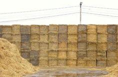 На Хмельниччині перевели зерносушарку з газу на солому і отримали економію в 10 разів http://ecotown.com.ua/news/Na-KHmelnychchyni-perevely-zernosusharku-z-hazu-na-solomu-i-otrymaly-ekonomiyu-v-10-raziv/  На Хмельниччині перевели зерносушарку з газу на солому і отримали економію в 10 разів