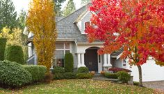 How To Add Autumn Curb Appeal On A Budget